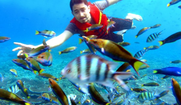 Percutian di Pulau Redang